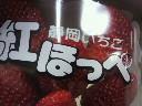 2010032320010001.jpg